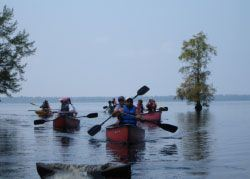 Kayaking on the Great Dismal Swamp Lake